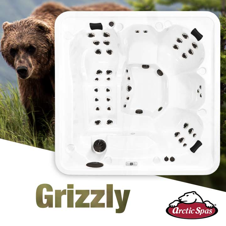 T Grizzly